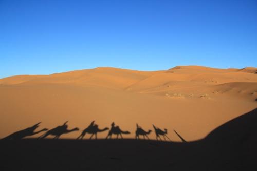 Kameltrekking in der Wüste Erg Chebbi