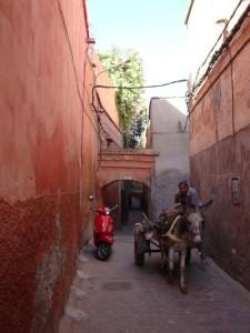 tag1 marrakesch weg durch die medina