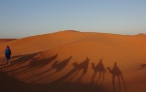 tag4 auf dem weg ins wüstencamp