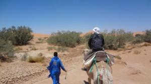 tag5 weg durch ein flussbett beim kameltrekking