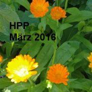 Prüfung Heilpraktiker Psychotherapie März 2016